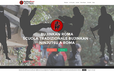Bujinkan Roma - Miei lavori